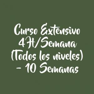 CURSO EXTENSIVO 4 H/SEMANA