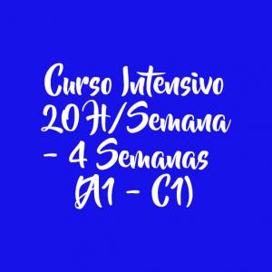 CURSO INTENSIVO 20 H/SEMANA – 4 SEMANAS
