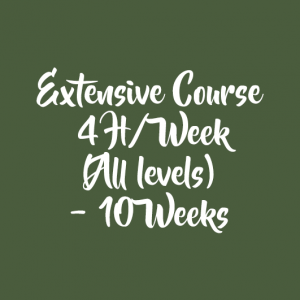 EXTENSIVE COURSE 4 H/WEEK – 10 WEEKS