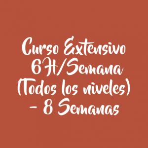 CURSO EXTENSIVO 6 H/SEMANA – 8 SEMANAS