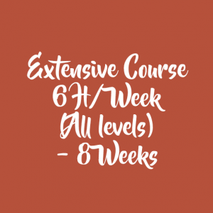 EXTENSIVE COURSE 6 H/WEEK – 8 WEEKS