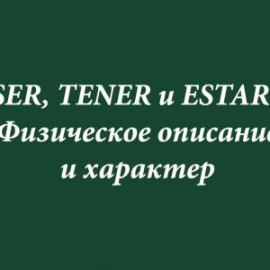 SER, TENER и ESTAR. Физическое описание и характер