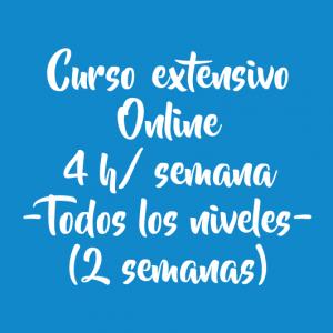 CURSO EXTENSIVO ONLINE 4 H/SEMANA – 2 SEMANAS