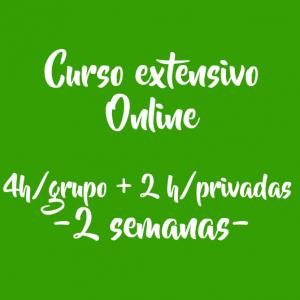 CURSO EXTENSIVO ONLINE – 4 H/ GRUPO + 2 H/ PRIVADAS