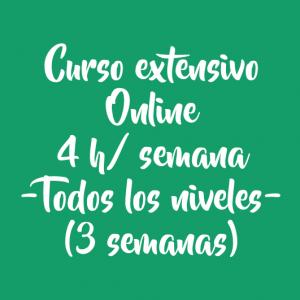 CURSO EXTENSIVO ONLINE 4 H/ SEMANA – 3 SEMANAS