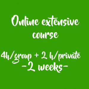 ONLINE EXTENSIVE COURSE: 4 HOURS/ GROUP + 2 HOUR/ PRIVATE (2 weeks)