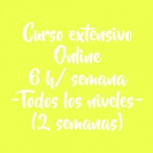 CURSO EXTENSIVO ONLINE 6 H/ SEMANA – 2 SEMANAS