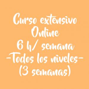 CURSO EXTENSIVO 6 H/ SEMANA – 3 SEMANAS