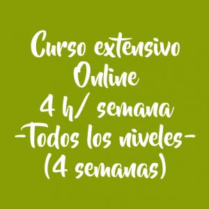 CURSO EXTENSIVO ONLINE 4 H/ SEMANA – 4 SEMANAS