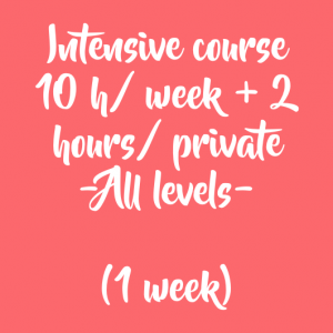 ONLINE EXTENSIVE COURSE: 10 HOURS/ GROUP + 2 HOUR/ PRIVATE (1 week)