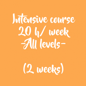 INTENSIVE COURSE – 20 H/WEEK – 2 WEEKS