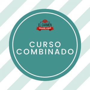 CURSO EXTENSIVO ONLINE – 4 H/ GRUPO + 2 H/ PRIVADAS (2 SEMANAS)