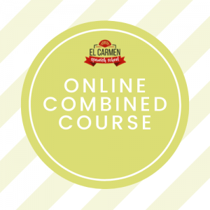 ONLINE INTENSIVE COURSE: 10 HOURS/ GROUP + 2 HOUR/ PRIVATE (1 week)